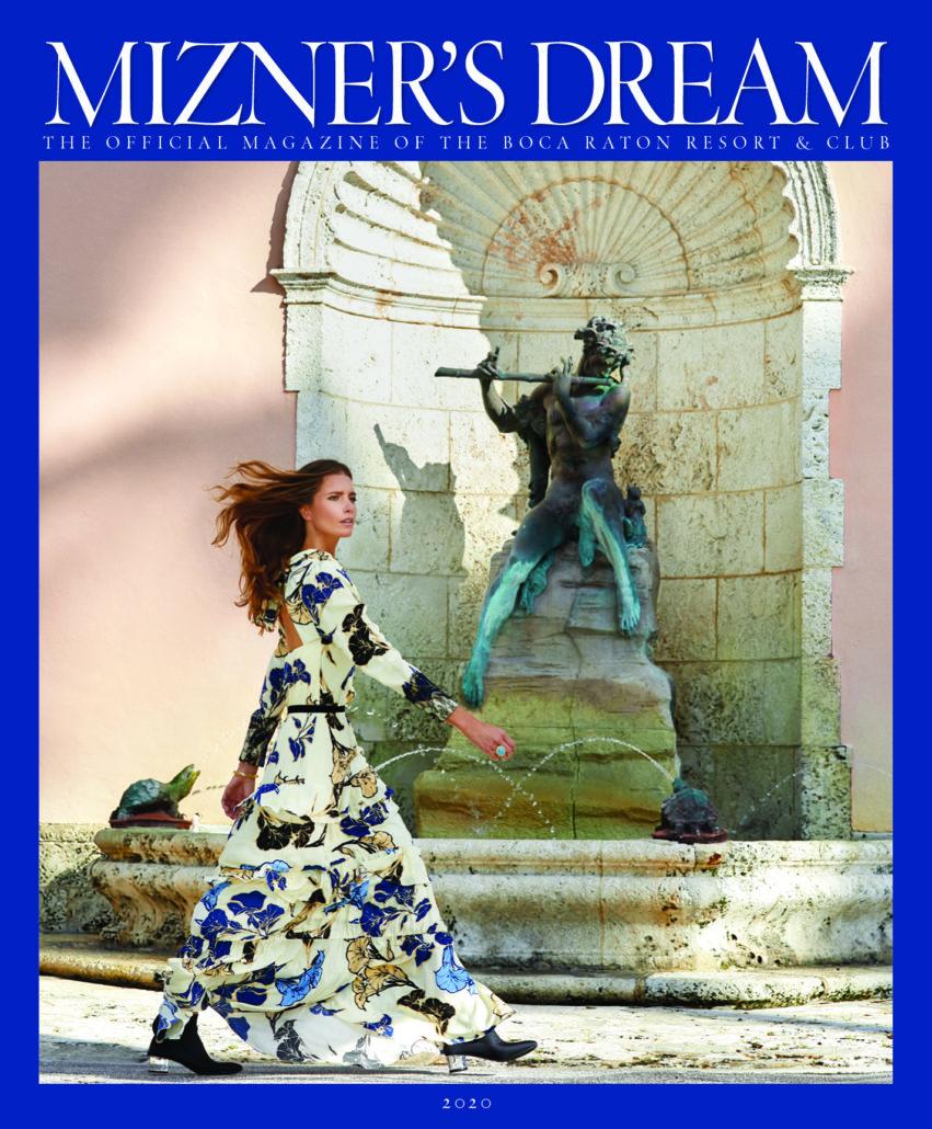 MIzner's Dream 2020